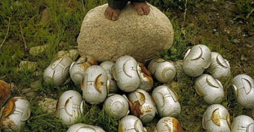 Cluster bombs operate by ejecting smaller sub-munitions or -bomblets- that can saturate an area of several football fields.