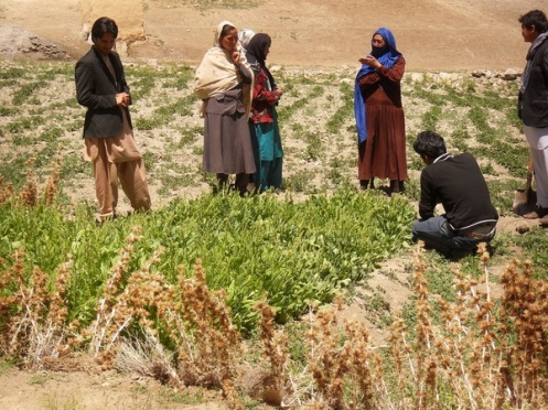 As part of the project, small agricultural schools will be founded to teach new agricultural methods to local communities in order to help improve crop yields