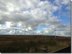 Whitelee Windfarm. Photo by Mahdi Hasan